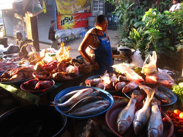 Food porn mon market in sangkhlaburi for Best fish market nyc